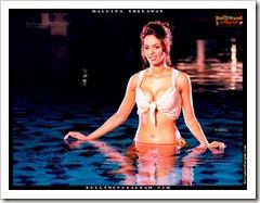 Mallika_Sherawat_BollywoodSargam_hot_784338