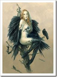 Black-wings