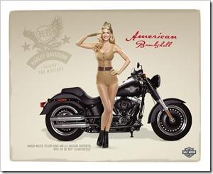 23075_Harley-Davidson_MilitaryAppreciation_Army_1280x1024511_123_783lo