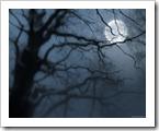 moon_tree_1280x1024